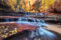 A cascade over sandstone in the wilderness of Zion National Park at the peak of autumn color.