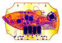An x-ray of a mechanical talking toy fish.  These toys are sound activated and the mechanical fish appears to sing along with a recorded song.  The mechanisms inside the fish are controlled by a microprocessor, motors and are powered by four large batteries.