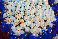 Tournament of Roses Parade, Floats, Los Angeles CA, Pasadena, California