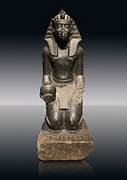 Ancient Egyptian granite statue of Sobekhotep V kneeling with ointment vessels. Egypt 13-14 Dynastie (1750-1700 BC) Berlin Neues Museum Cat No: AM 10645