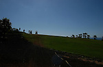 Silhouetted golfers and golf carts, Golf del Sur, Tenerife, Canary Islands.