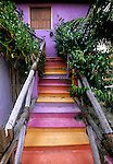 House's colorful stairway on the island of Holbox.