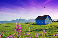 gaspesie blue house