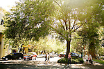 Visitors walk around the tree-covered square of downtown Healdsburg, Ca., on Saturday, July 31, 2010.