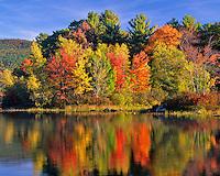 USA, New Hampshire, Trees in fall color reflecting in Lake Kanasatka near Moultonborough.