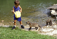 Afghan American boy plays with gray wolf pups near a lake