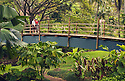 National Tropical Botanical Garden at Lawai, Kauai, Hawaii: couple on bridge over stream at McBryde Garden. .#D0405074