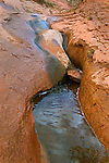 Willow Creek pools and cascades on the sweeping slickrock that forms Willow Gulch.<br /> Glen Canyon National Recreation Area, Utah.