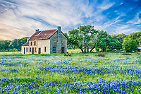 We came back a second time to captured this old farmhouse with a little closer view with a field of bluebonnets in front of it in the Texas Hill Country making a nice landscape image.