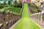 The castle wall and vineyards of Castelgrande in Bellinzona, Switzerland a town with three castles