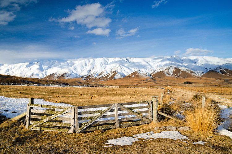 Farm gates and tussock with snow covered Hawkduns behind, Central Otago, New Zealand