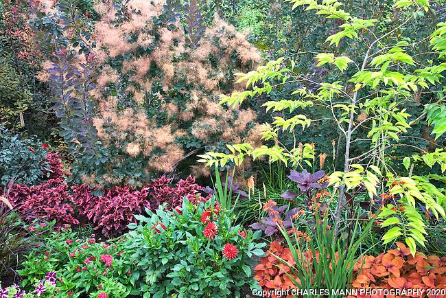 The Drop Dead Red garden at Denver Botanic Garden was designed by horticulturist and garden writer Rob Proctor.