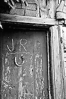 Horseshoe for Luck - Barn Door