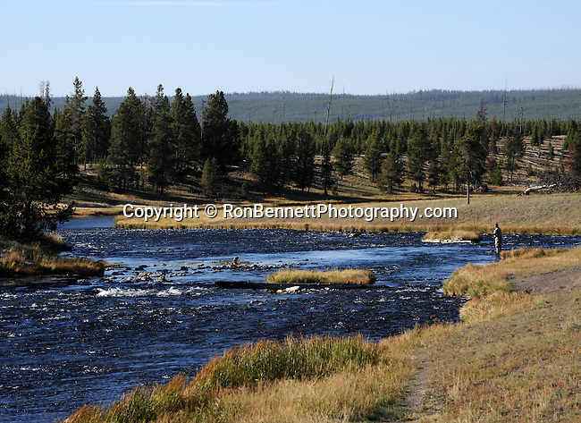 Stream fly fishing big sky county montana for Best trout fishing states