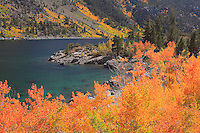 Lake Sabrina - Fall Color