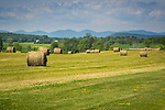 Landscape with field and hay bales, mountains and sky.