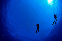 Shots_of_underwater_divers_taken_around_the_world