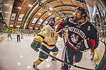 2013-12-17 NCAA: Northeastern at Vermont Men's Hockey