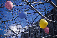 deflated colorful ballons hang limply in tree