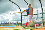 22 February 2013: Washington Nationals' infielder Chad Tracy takes batting practice during a full squad Spring Training workout at Space Coast Stadium in Viera, Florida. Mandatory Credit: Ed Wolfstein Photo *** RAW File Available ***