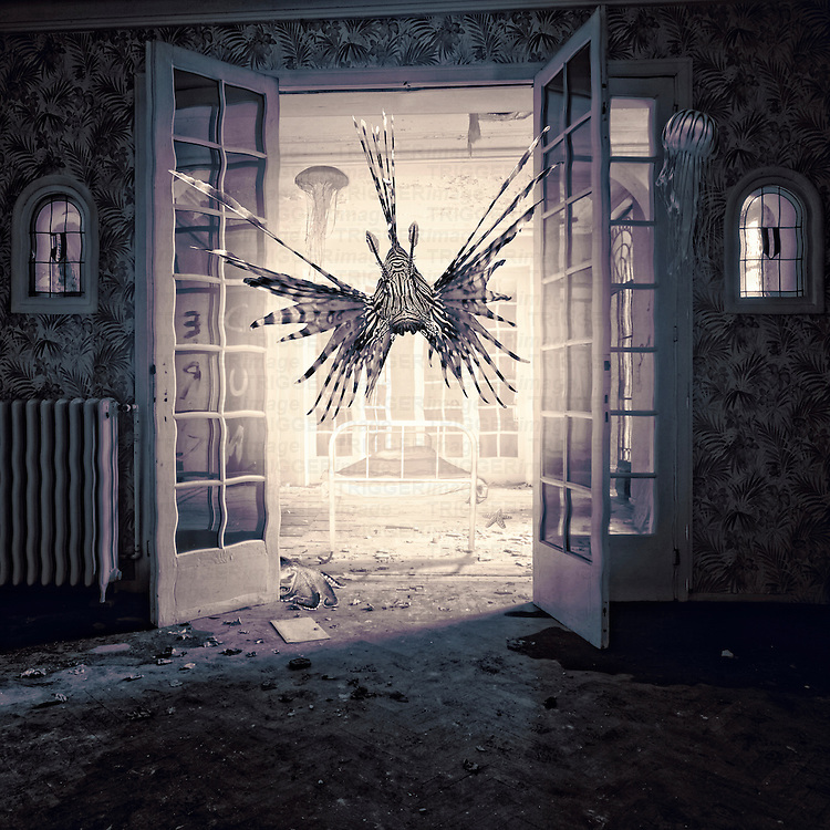 Conceptual image of a large spiky fish floating into a derelict room through open French windows