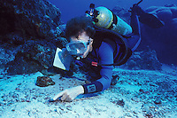 Dr. Sylvia Earle diving in the Dry Tortugas