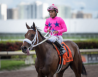 HALLANDALE BEACH, FL - MARCH 04: MISS SKY WARRIOR, #7, ridden by Paco Lopez, wins the 30th running of the Davona Dale, earring 50 points towards the Kentucky Oaks, at Gulfstream Park Race Course on March 4, 2017 in Hallandale Beach, Florida. (Photo by Samantha Bussanich/Eclipse Sportswire/Getty Images)