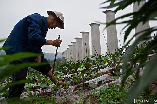 71-year-old Zhou Jiezhong ekes out a living as a new urbanite by growing vegetables under a new bridge on land that has been claimed by the government to build relocation housing project in a southwestern Chinese city.<br /> <br /> He and his neigbours were all moved from their farmland and resettled nearby in a purpose-built estate. <br /> <br /> Some bemoan the poor relocation compensation but others are happy to enjoy a social life away from the burden of farming. <br /> <br /> China is pushing ahead with a dramatic, history-making plan to move 100 million rural residents into towns and cities over the next six years &mdash; but without a clear idea of how to pay for the gargantuan undertaking or whether the farmers involved want to move.<br />