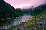 Idaho, North Central, Pierce, Clearwater National Forest, Sunset through the mist after a afternoon summer rain storm over The North Fork of the Clearwater River near Kelly Forks.