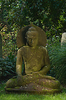 Buddha Statue outdoors under a tree