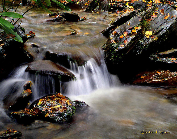Detail image of a stream in the Great Smokie Mountains National Park. Smoky Mountain photos by Gordon and Jan Brugman.