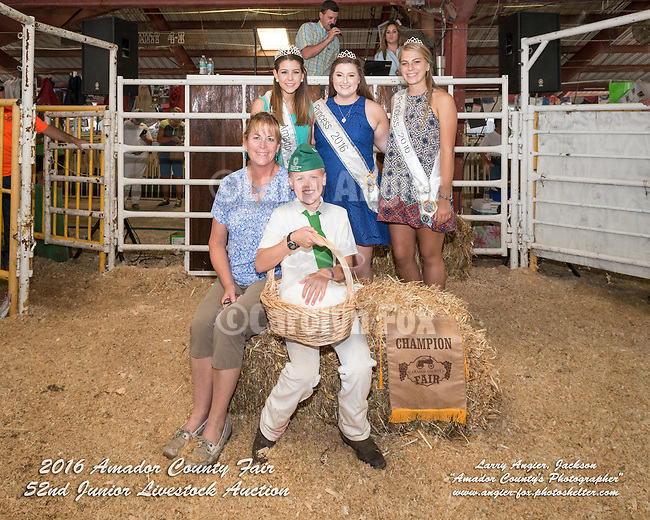 Day 4 of the Amador County Fair, Plymouth, Calif.<br /> <br /> 52st Junior Livestock Auction