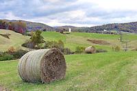 Bundoran Farm in Albemarle County, VA. Photo/Andrew Shurtleff