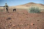 KUNENE, NAMIBIA - APRIL 26: An unidentified park ranger stands in the desert with his rifle and dog on April 26, 2008 in Kunene, Namibia. He participated in a 2-week survey with a walking safari with camels and a crew through 155 miles of proposed parkland through the savanna at Etosha National park, through rocky badlands, across the world's oldest desert, the Namib and the blinding dunes and fogy cliffs at Skeleton Coast on the Atlantic Ocean. One of the missions was to track the black Rhinoceros who is now brought back from certain extinction, and more than one hundred fifty of them roam free in this remote area. (Photo by Per-Anders Pettersson).