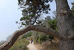 Hikers on Bird Island Trail