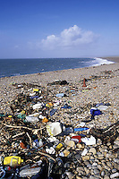 Flotsam and jetsam collected on Chesil beach, Portland, Dorset, England