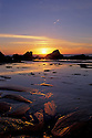 Sunset and tidepools at low tide near Seal Rock on the central Oregon coast.