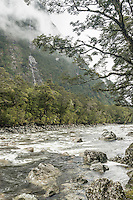 Cleddau River, Fiordland National Park, Southland, World Heritage Area, New Zealand