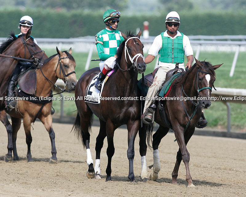17 July 2010:  Alma d'Oro, John Velazquez up, takes part in the post parade before the R.R.M. Carpenter Jr. Memorial Stakes at Delaware Park, Stanton, DE. She is trained by Todd Pletcher; she finished 3rd.