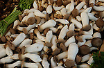 Close up of mushrooms on parisian market stall.