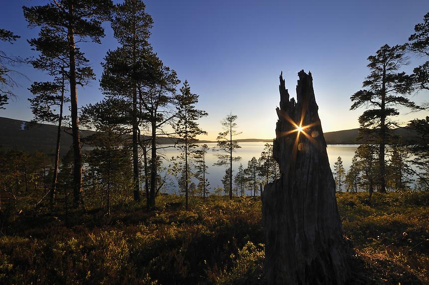 Landscape,Landskap,Norway Landscape, landskap,