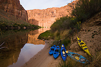 Kayaks beach at a camp site along the mirror-smooth morning water on the Colorado River below the Glen Canyon Dam. The 17-mile stretch of canyon between the dam and Lee's Ferry, where boats trips start the ten-day run through the Grand Canyon, is a low-traffic spot for two-day float trips on canoe, kayak or raft, as well as trout fishing. (Kevin Moloney for the New York Times)