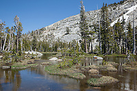 """Pond in Desolation Wilderness 2"" - Photograph of an unnamed pond in the Tahoe Desolation Wilderness."