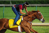 I'll Have Another exercises on April 30, 2012 in preparation for the 138th running of the Kentucky Derby this Saturday at Churchill Downs in Louisville, Kentucky.