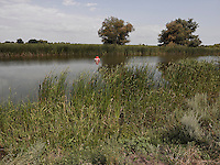 LAKE_LOCATION_75036
