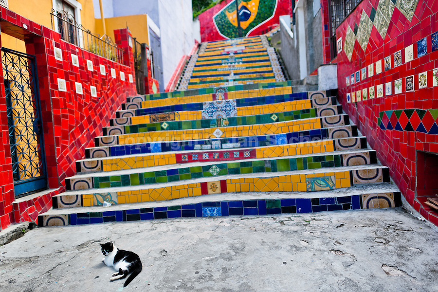 A cat lies on Selaron's Stairs (Escadaria Selarón), a colorful mosaic tile stairway, in Rio de Janeiro, Brazil, 12 February 2012. World-famous staircase, mostly covered by vibrant yellow, green and blue tiles (inspired by the colors of the Brazilian flag), is the masterpiece of Chilean-born artist Jorge Selarón who considers it as a personal tribute to the Brazilian people. Connecting the neighborhoods of Santa Teresa and Lapa, the stairway is made up of 250 steps and measures 125 meters long. In 1990 Selarón began work on the stairway, creating a constantly evolving piece of art, now adorned with over 2,000 brightly colored tiles collected from over 60 countries. Selarón funds his one man's project through donations and the sale of his black-and-red paintings which mostly depict a pregnant African woman or himself. Living his passion, the eccentric 65-year-old artist claims that this crazy and unique dream will only end on the day of my death.