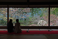 A pair of women contemplate the gardens at Hosen-in Temple, near Kyoto, from a viewing platform