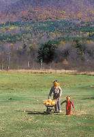 Pumpkin man and boy scarecrows in field in autumn fall landscape and hills with wheelbarrow of pumpkins - a funny scene