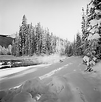 Emerald River Entering Emerald Lake, Winter, Yoho National Park