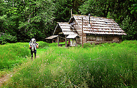 A hiker makes her way to the Olympus Ranger Station. The Hoh River trail in Olympic National Park starts in the mossy and lush Hoh Rain Forest. From there you climb over 5,000 ft. in elevation along towering trees and rock to overlook the windswept Blue Glacier on Mt. Olympus. Tracing your steps back to the Hoh River visitors center the hike covers over 36 miles of diverse climate and ecosystems ranging from temperate rain forest to alpine.